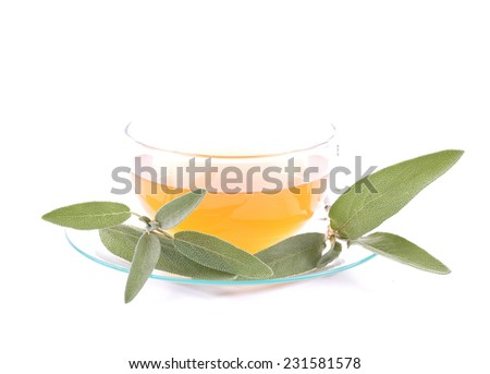 Sage tea - stock photo