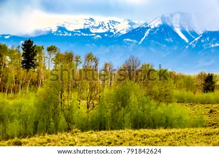 Sagebrush Stock Images Royalty Free Images Amp Vectors