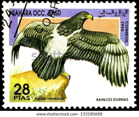 "SAHARA - CIRCA 1995: A stamp printed in Sahrawi Arab Democratic Republic, shows a Aquila verreauxi bird, with the same inscription, from the series ""Birds of prey"", circa 1995 - stock photo"