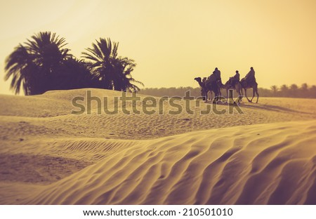 Sahara desert. Filtered image:cross processed vintage effect. - stock photo