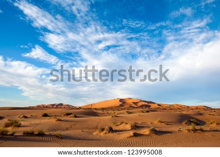 Sahara desert landscape featuring the windswept rippled orange sand dunes of Erg Chebbi, Morocco. Dramatic blue sky with streaks of white clouds. Wide angle shot. - stock photo
