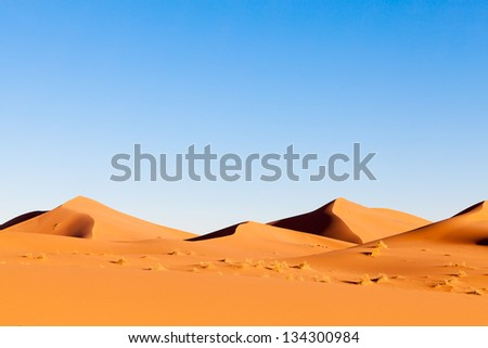 Sahara Desert landscape with orange sand dunes, dramatic shadows and clear blue sky - stock photo