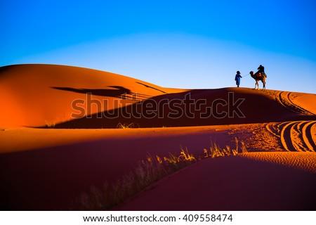 Sahara desert sand - stock photo