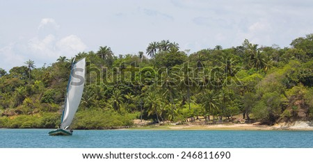 Sail boat in the amazon of brazil: Rain forest near Salvador in the Bahia de Todos. Landscape with a traditional handmade boat of wood. - stock photo