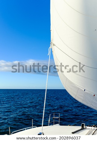 Sail on a yacht billowing out in the wind, sailing across the wide blue ocean