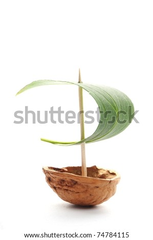 sailboat with leave sail isolated on whit background - stock photo