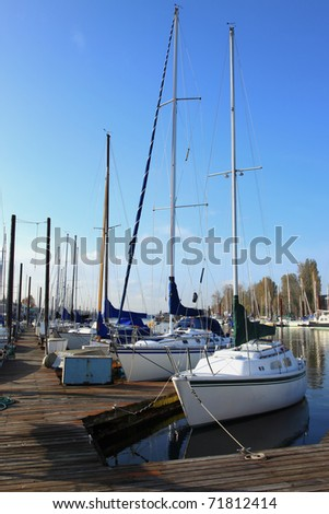 Sailboats in a marina, Portland Oregon.