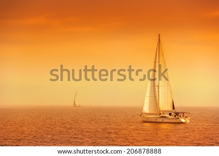 Sailing ship yachts with white sails , morning shot