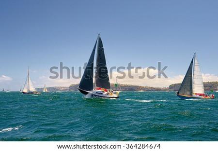 Sailing yachts regatta. Series yachts and ships.  Yachting. Sailing - stock photo