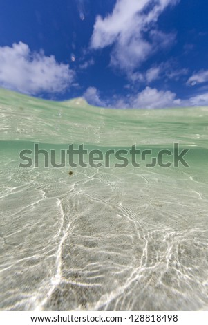 Saint Martin Beaches Underwater