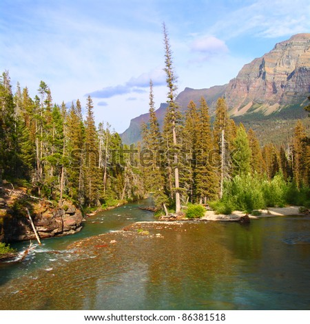 Saint Mary Creek flows through thick forests of Glacier National Park - Montana - stock photo