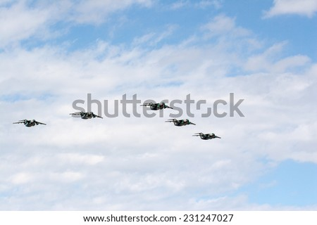 SAITAMA, JAPAN - NOVEMBER 3, 2014: Japanese Air Self-Defense Force holds their annual airshow at their Iruma airbase. They have a demonstration flight by military cargo airplanes called C-1.