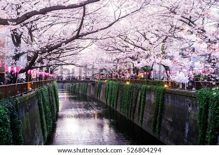 japan stock images royaltyfree images amp vectors