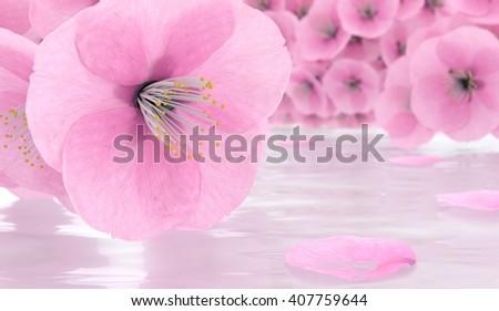 Sakura flowers. cherry blossom 3d render - stock photo