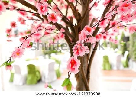 sakura tree - stock photo