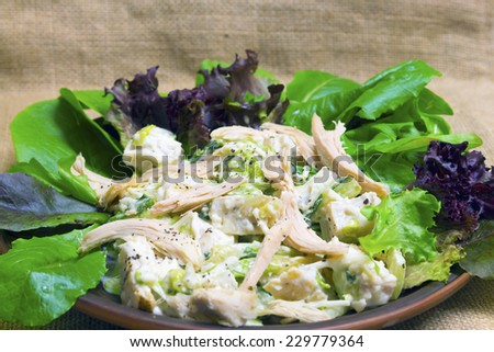 Salad Caesar close up. Selective focus. - stock photo