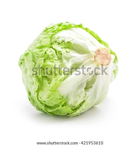 salad head isolated on white - stock photo