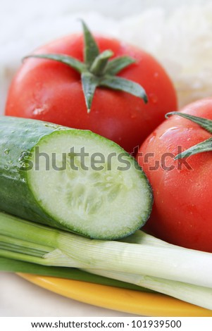 Salad ingredients with tomato, onion and cucumber - stock photo