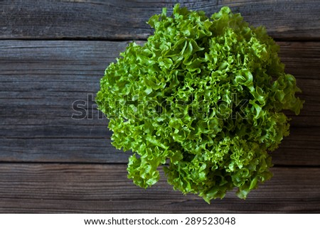 Salad lettuce natural organic vegetarian snack on vintage wooden background. Rustic style and natural light. - stock photo