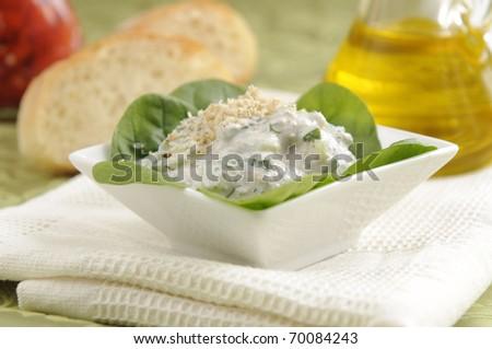 Salad made of yoghurt and cucumbers, called Snezhanka or Milk Salad - stock photo