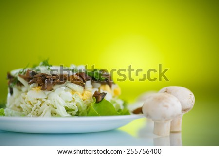 salad with cabbage, eggs and mushrooms on a green background - stock photo
