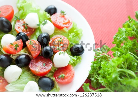 salad with cherry tomatoes and mozzarella caprese, closeup