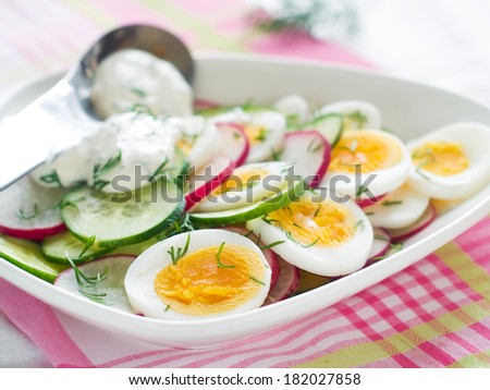 Salad with cucumber, radish and egg, selective focus - stock photo