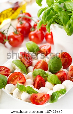salad with mozzarella, tomatoes and green basil