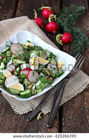 Salad with radish , green onion and cucumber - stock photo