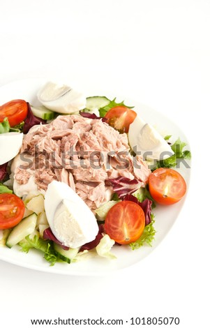 salad with tuna and vegetables - stock photo