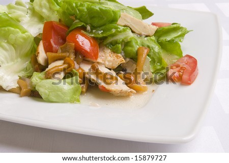 Salad with vegetables, herbs and mushrooms on white plate
