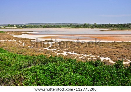 Salina dei Monaci. Natural deposit of salt in the coastal area of Manduria. Apulia. Italy. - stock photo