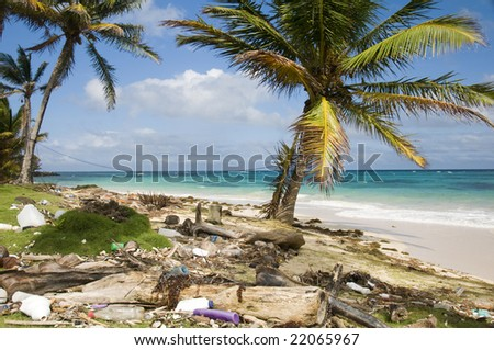 sallie peachie beach on the malecon highway rural corn island nicaragua caribbean sea with litter and garbage - stock photo
