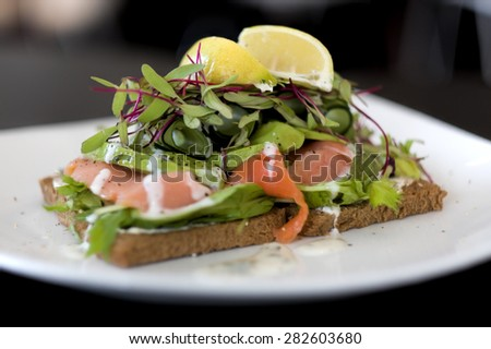 Salmon and Avocado Open Sandwich on Rye Bread with Lemon Slices and Microgreens - stock photo
