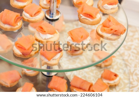 Salmon Carpaccio on Toasted Bread - stock photo
