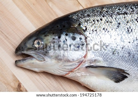 Salmon fish on wood - stock photo