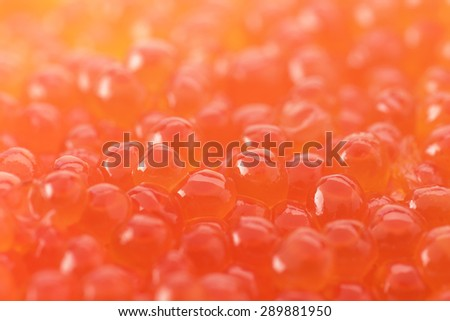 Salmon roe, or Ikura used in Sushi, - stock photo