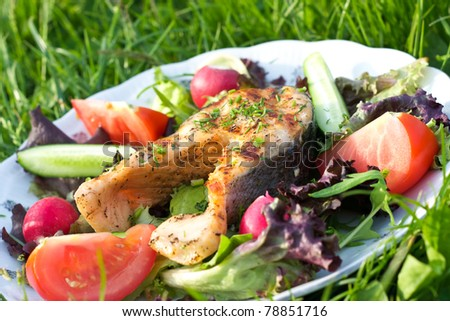 Salmon served on grass surface - stock photo