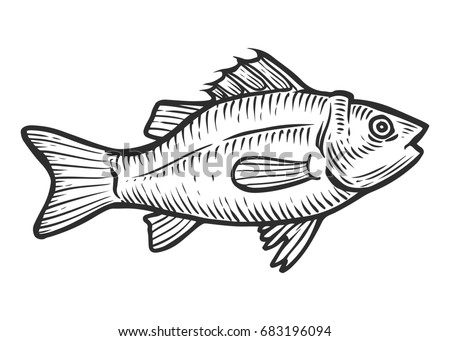 Illustration big fish eating small fish stock vector for Healthiest white fish