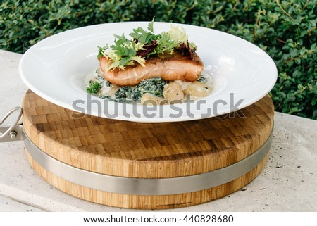 Salmon with steamed spinach and creamy potatoes - stock photo