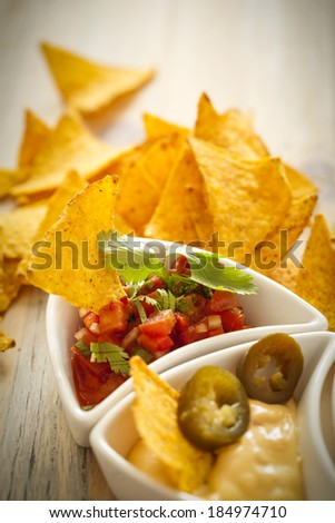 Salsa and Chips - stock photo