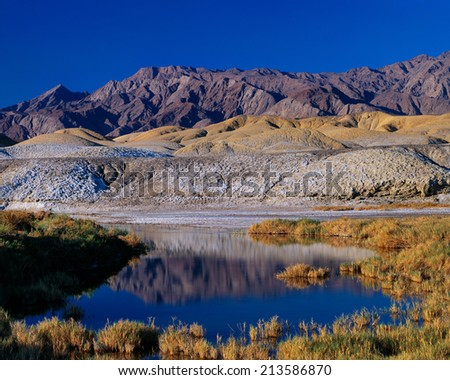 Salt Creek and Panamint Mountains, Death Valley, California. It's hard to imagine that a riparian environment like this can exist in the middle of one of the hottest and driest places on earth. - stock photo