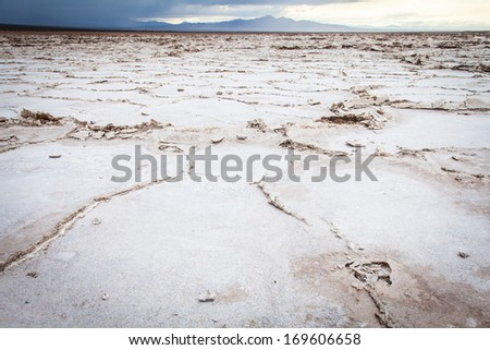 Salt Desert Close To Amboy Usa Concept For Desertification