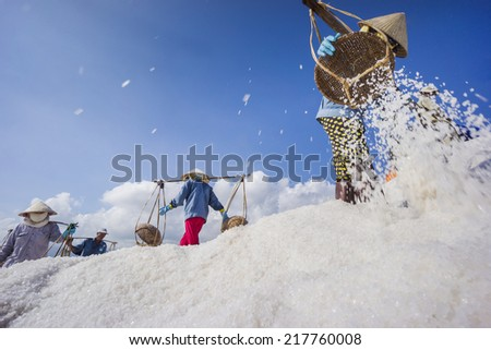 Salt field in Nha Trang, Viet Nam.  Workers transporting salt from the fields in Hon Khoi, Viet Nam.  - stock photo