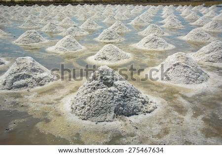 salt field in Thailand - stock photo