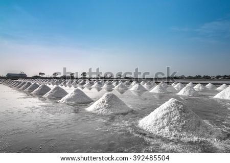 salt fields with piled up sea salt in Thailand - stock photo