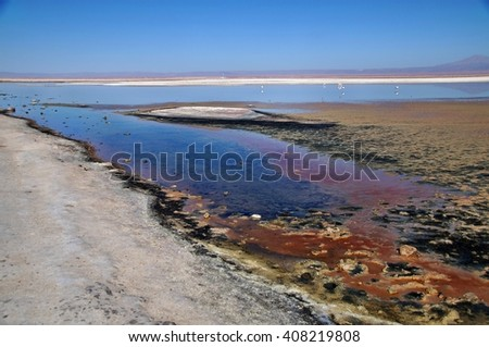 Salt lake formations at Laguna Chaxa in Salar de Atacama, Chile - stock photo