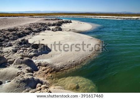 Salt lake formations on shore of hypersaline Cejar Lagoon, Atacama Desert, Chile - stock photo