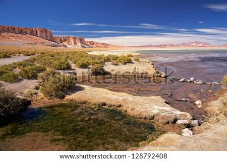 salt lake Salar de Tara, desert Atacama, Chile - stock photo