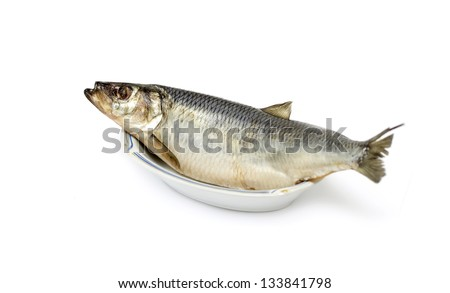 Salted herring fish isolated on white background